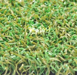 High Quality Artificial Grass for Golf Putting Green (G16462)