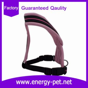Summer Cool Nylon Pet Air Mesh Dog Harness Pet Products pictures & photos
