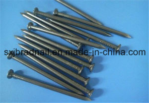 Iron Nail/ Common Wire Nail/Common Iron Nails pictures & photos