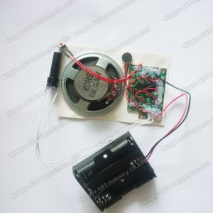 Motion Sensor Recordable Module, Voice Chip pictures & photos
