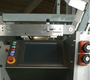 High Speed Automatic Case Packer Dx360 pictures & photos