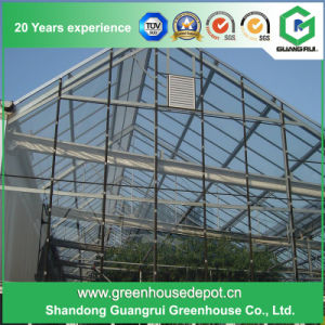 Multi-Span Steel Frame/ Aluminum Profile Polycarbonate Sheet Greenhouse pictures & photos