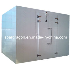 Restaurant Walk in Freezer Food Keeping (OEM cold room) pictures & photos