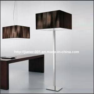 Classical Floor Lamp / Home Standing Light Lighting in CE pictures & photos