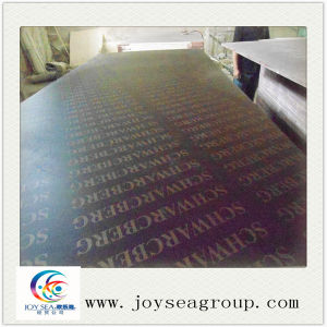 Factory Sales Directly Film Faced Plywood/ Shuttering Plywood for Construction pictures & photos