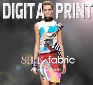 2017 Design of Textile & Digital Textile of Digital Print (X1041) pictures & photos