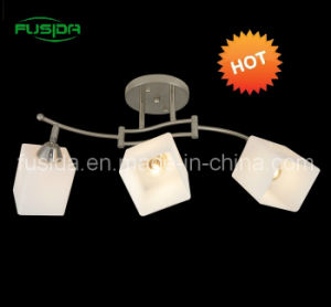 Modern Glass Square Chandelier Lighting Glass Lighting pictures & photos
