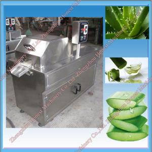 Automatic Aloe Vera Cutting Machine / Slicer Machine Made in China pictures & photos