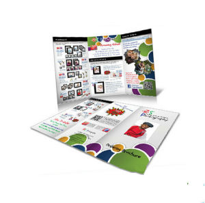 Customerized Cheap Brochure Printing Service (jhy-663) pictures & photos