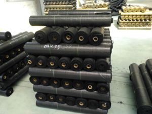 Fabric/Polyester Fabric/Building Material pictures & photos