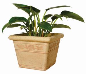 Gardening Pots, Plastic Flower Pot, Imnecraft Round Flower Pot (10EDS30)