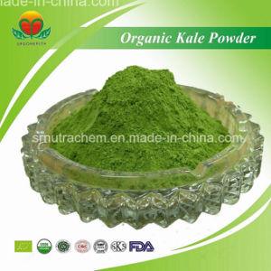Manufacturer Supply Organic Kale Powder pictures & photos