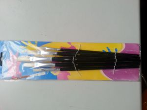 Flat Bristal Artist Painting Brush Set pictures & photos