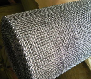 Hot Dipped Galvanized Iron Square Wire Mesh Cloth (anjia-605) pictures & photos