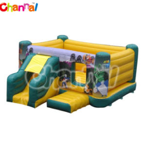 Inflatable Mini Jumper Combo/Kids Air Jumper Bb031 pictures & photos