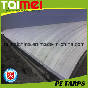 Heavy Tarpaulin/Tarps for Agricultural/Cowshed/Lair/Byre Curtain pictures & photos