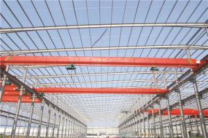 China Yuqi Brand Electric Single Beam Overhead Crane (LD Model)