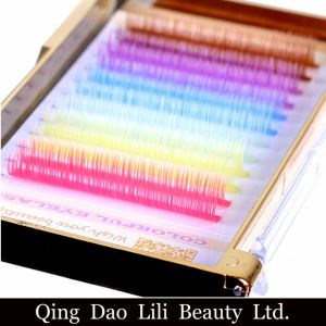 Llibaeuty High Quality Colored Individual Eyelashes pictures & photos