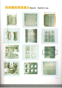China Rubber Injection Mould Supplier pictures & photos