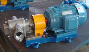 KCB55 Stainless Steel Gear Pump for Cooking Oil pictures & photos