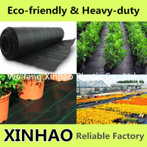PP Woven Weed Control Fabric/Weed Mat/Ground Cover pictures & photos
