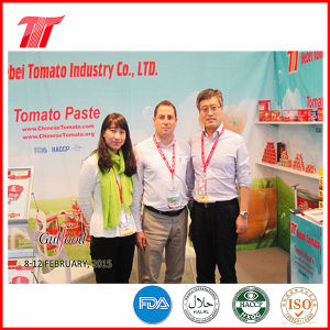 400g Vego Brand Healthy Canned Tomato Paste pictures & photos
