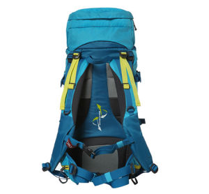 Professional Outdoor Waterproof Hiking Backpack for Camping, Hiking, Mountaineering, Rucksack pictures & photos