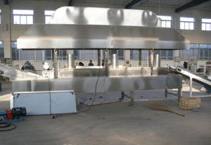 Continuous Fryer Lxz4000 From Jinan Dayi Machinery pictures & photos
