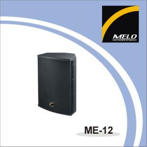 Professional Full Range Speaker ME-12