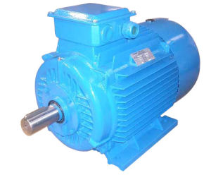 Ie2 (CE) Y2 Three Phase Induction Motor (Y2-132M-4) pictures & photos