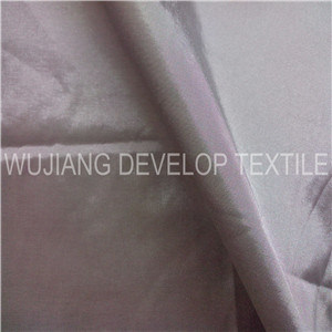Polyester Nylon Interwoven Blended Two Tone Fabric (DNT3101)