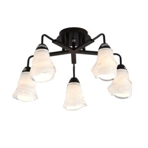 Chandelier Ceiling Lamps Down Lights (GX-8107-5) pictures & photos