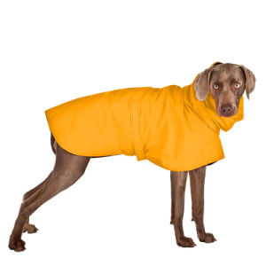 Customized Pet Dog Clothing pictures & photos