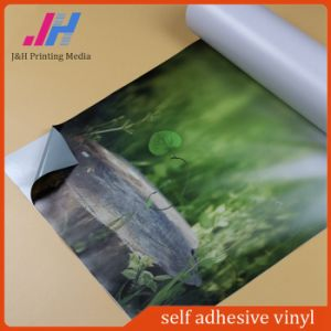 New Product Color Cutting Vinyl, Self Adhesive Vinyl Roll pictures & photos