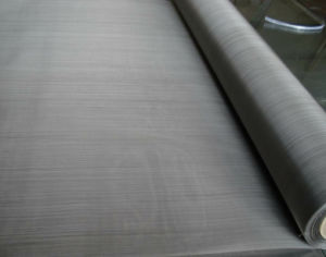 Micronic Wire Filter Cloth- Stainless Steel Wire Mesh pictures & photos