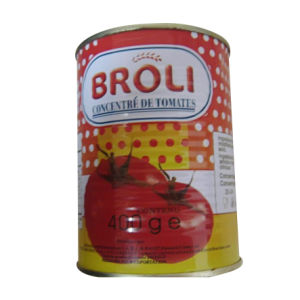 Canned Tomato Paste(400g)