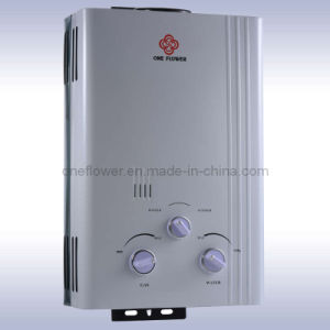 Gas Water Heater (JSD12-20-10)