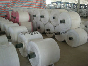 Raw Material Polypropylene Fabric From China