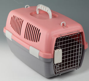 Fashion Safety Pet Transport Carrier Box