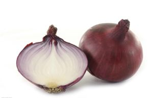 New Crop Onion pictures & photos