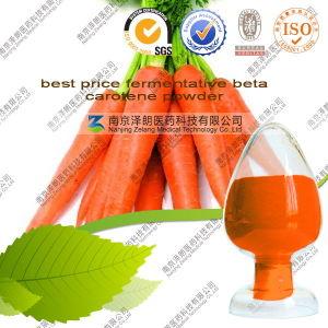Best Price Fermentative 96% Beta Carotene Powder