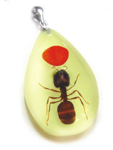 Insect Necklace-Ant and Red Bean (YD07)