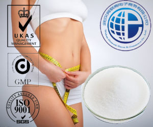 L-Carnitine No Side Effect Lose Weight Raw Powder CAS 541-15-1 L Carnitine pictures & photos