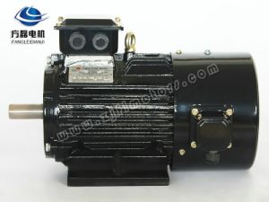 Yvf2 Inverter Dedicated Electric AC Motor pictures & photos