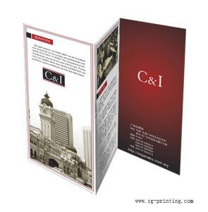 Leaflet Printing (SG-L002)