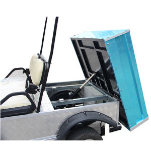 2 Seater Hunting Buggy with Rear Cargo Box & Roof pictures & photos