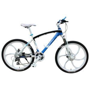 MTB Bike (WT-2653) pictures & photos