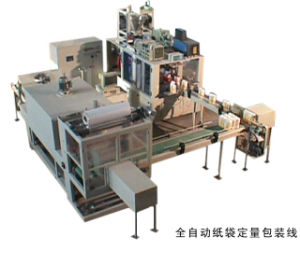 Automatic Paper Bag Flour Packing Machine (VFSW2000) pictures & photos