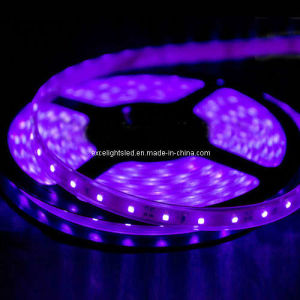 LED Strip Light With Purple 3528 LED Ribbon Light