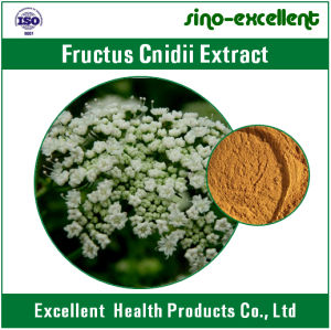 Fructus Cnidii Extract Osthole Powder